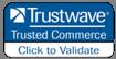 Trustwave Internet Security